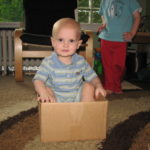 Wordless Wednesday~Fun with the Box!