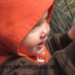 Wordless Wednesday ~ Pumpkin Patch!