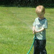 Wordless Wednesday – Water Hose