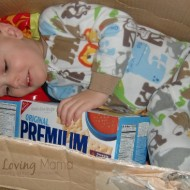 Wordless Wednesday – Box Fort and Saltines