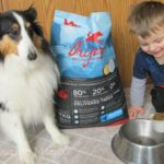 Orijen Pet Food Delivered To Your Door From MrChewy.com {Review}