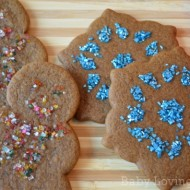 Wilton Christmas Gingerbread Cookies