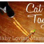 Create Your Own Cat Toy (Yes, really!) {Craft Tutorial}