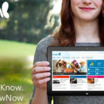User-friendly Design : Get to Know the New MSN Available on Mobile Devices #MSNKnowNow