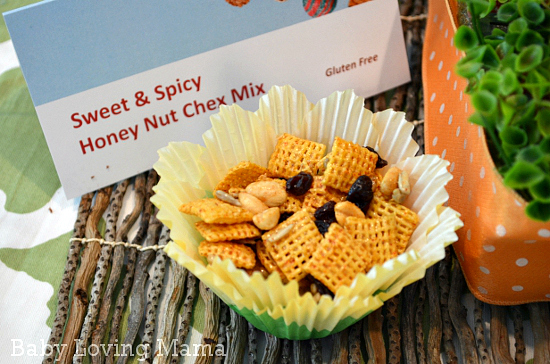 Sweet Spicy Honey Nut Chex Mix Gluten Free