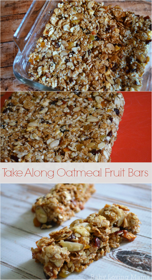 Take Along Oatmeal Fruit Bars by General Mills