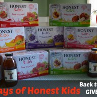 Honest Kids Organic Juice Drink Pouches: School Lunch Option with Less Sugar {Back to School Giveaway}