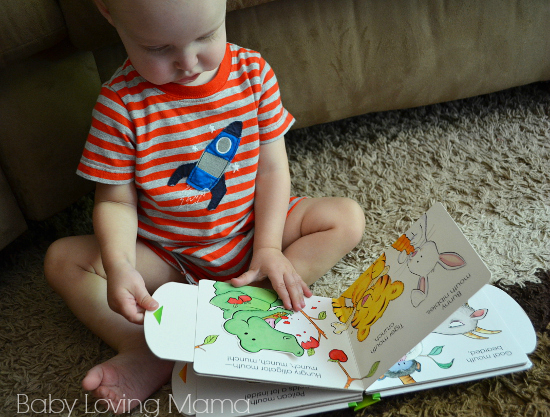 Munch Matthew Van Fleet Board Book Reading