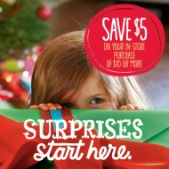 Hallmark Exclusive Blogger Discount: Save $5 off a $10 Purchase in Store Coupon