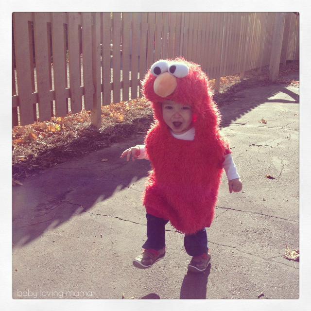 Milestone Wesley Elmo Costume