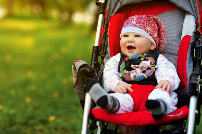 Tortle Baby in Stroller