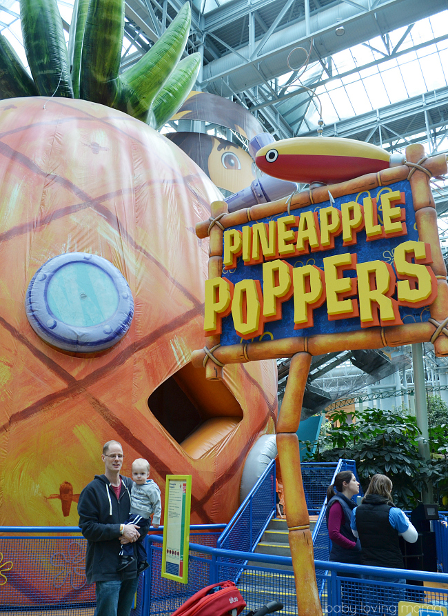 Nickelodeon Universe Mall of America Pinapple Poppers