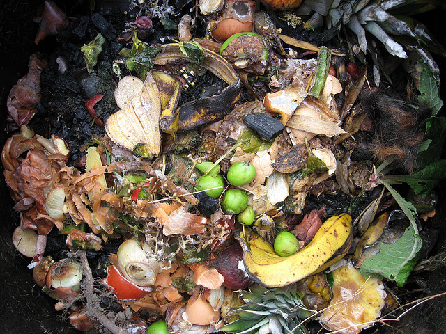 Compost Decomposition