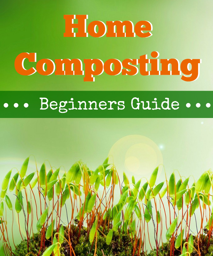 Guide to Composting