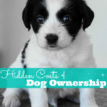 Hidden Costs of Dog Ownership: Are You Ready for a Dog?