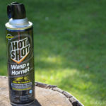 Removing Unwanted Pests with Hot Shot® Insecticides: Don't Let Bugs Feel at Home #HotShot