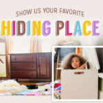 Go Away Ants + Hot Shot Hiding Place Facebook Sweepstakes #HotShot