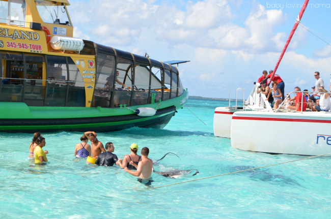 Princess Cruises Caribbean Princess Grand Cayman Excursion Stingray Experience