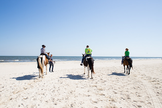 Gulf County FL Beach Horseback Riding