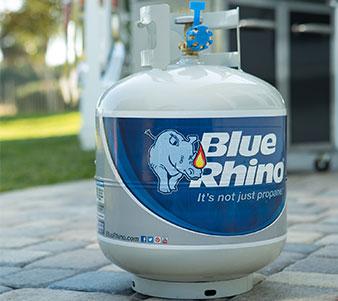 Blue Rhino march of dimes