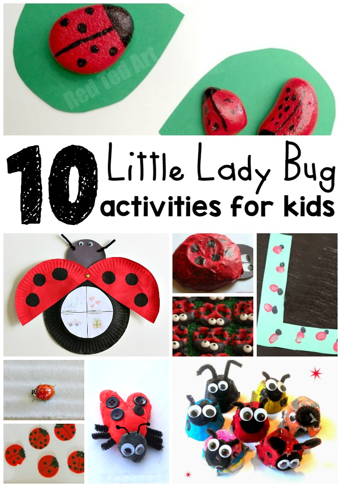 10 Lady Bug Activities for Kids
