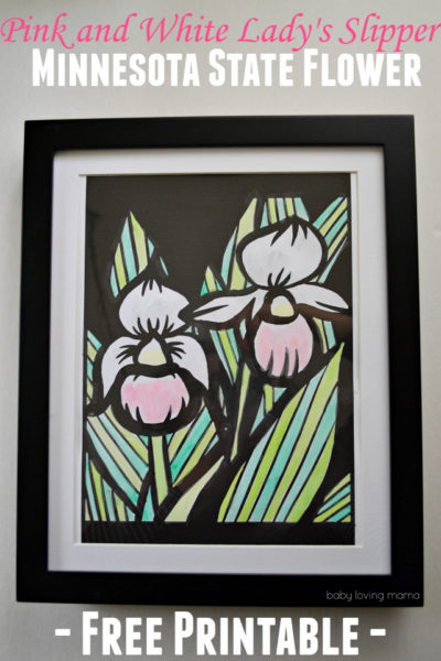 Minnesota State Flower: Pink and White Lady's Slipper Free Printable Art Project