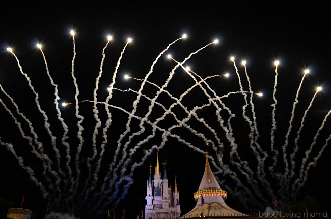 Walt Disney World Magic Kingdom Fireworks