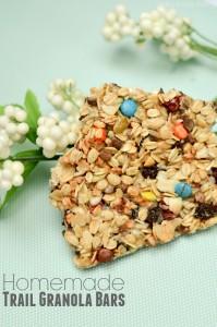 Homemade Trail Mix Granola Bars