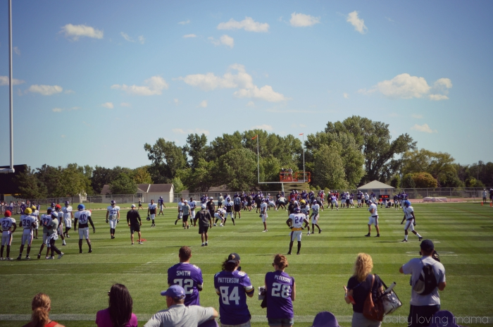 MN Vikings Training Camp Mankato