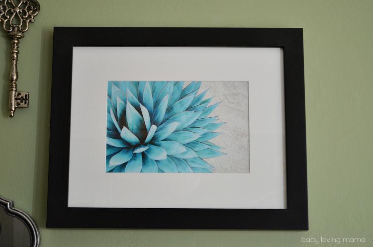 Photos Succulent Framed Print