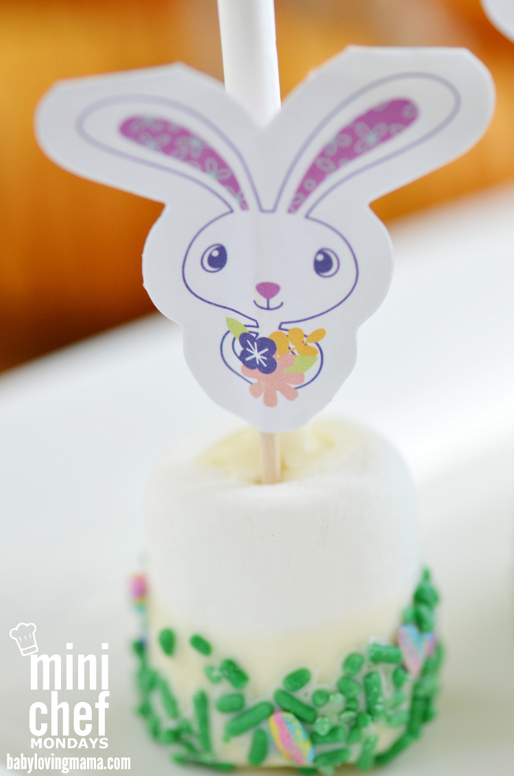 Easter Chocolate Dipped Marshmallow Pops