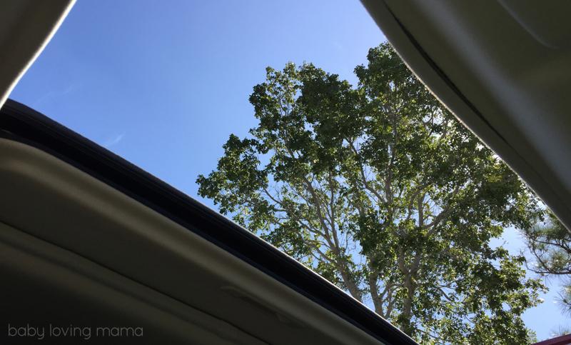 Mitsubishi-Outlander-SEL_Florida15