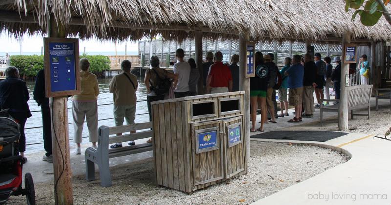 Dolphin Research Center Florida_7