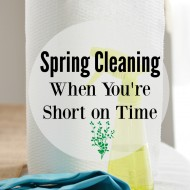 Spring Cleaning for When You Are Short on Time