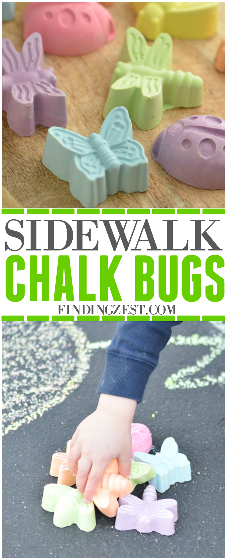 Learn how to make these Easy Homemade Sidewalk Chalk Bugs with just a few ingredients. Makes a great outdoor summer activity for kids or party favors!