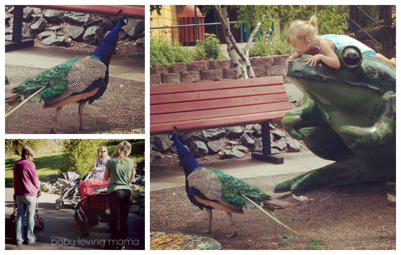 Tiny Love Kick Play Gym Zoo_3