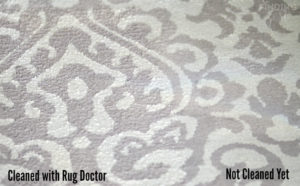 Cleaning Rugs with Rug Doctor