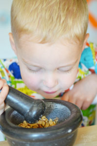Grinding Walnuts for Protein Bites