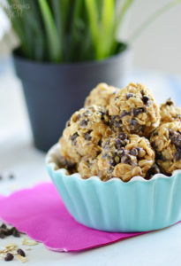 Oatmeal Peanut Butter Protein Bites Recipe
