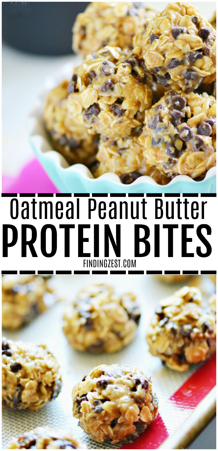 You'll definitely want to make this no-bake Oatmeal Peanut Butter Protein Bites recipe! This kid friendly snack has oatmeal, peanut butter, walnuts, honey and chocolate chips, making it perfect for an afternoon pick me up, school lunch or make ahead breakfast to save time on busy mornings!