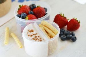 Cinnamon Yogurt Dippers with Fruit