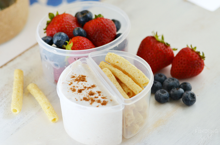 Cinnamon Yogurt Dippers with Fruit