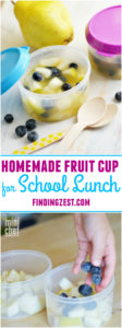Homemade Fruit Cup for School Lunch