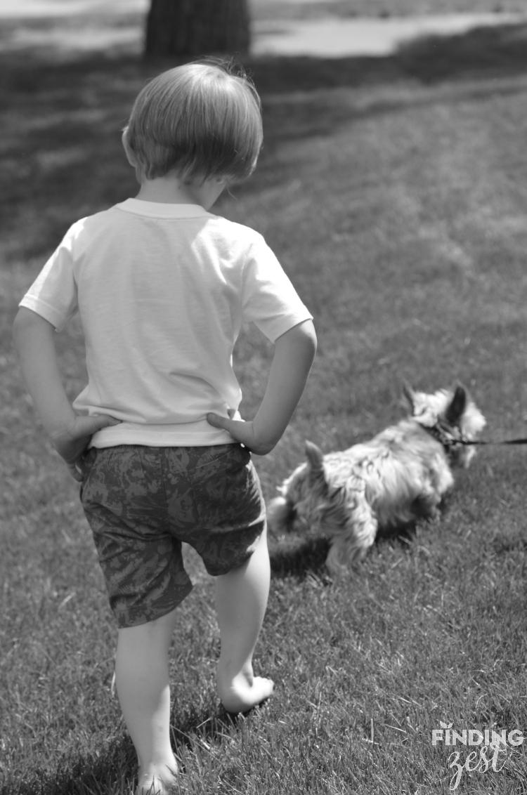 jax-following-the-dog