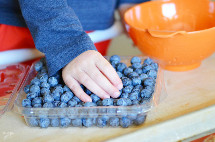 Make these easy Blueberry Chocolate Clusters as a fun dessert or snack! With only three ingredients, they are a perfect recipe for kids!