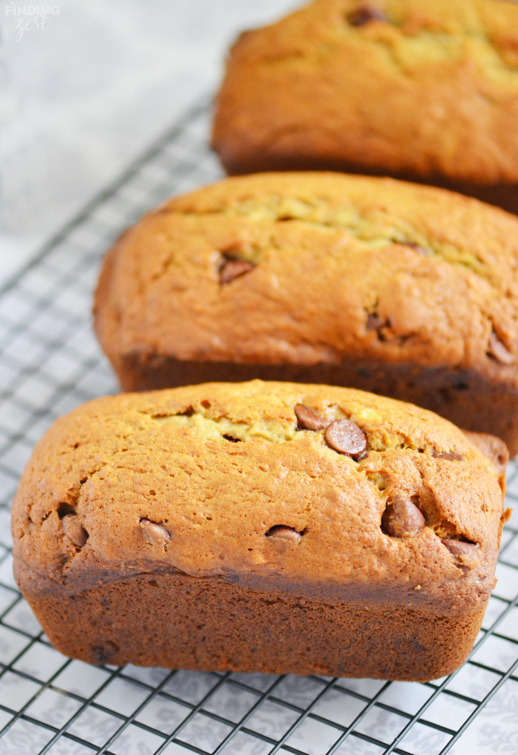 This homemade chocolate chip banana bread is so flavorful and moist. Make a double batch and freeze to enjoy later!