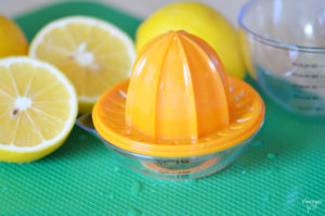 This small citrus juicer is perfect for juicing oranges. lemons and limes!