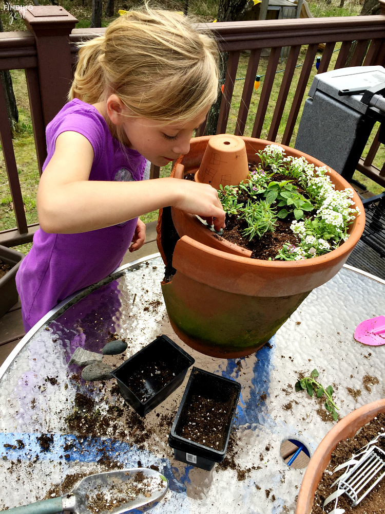 Learn How To Build A Fairy Garden With Kids In Clay Pots. This Kids Activity