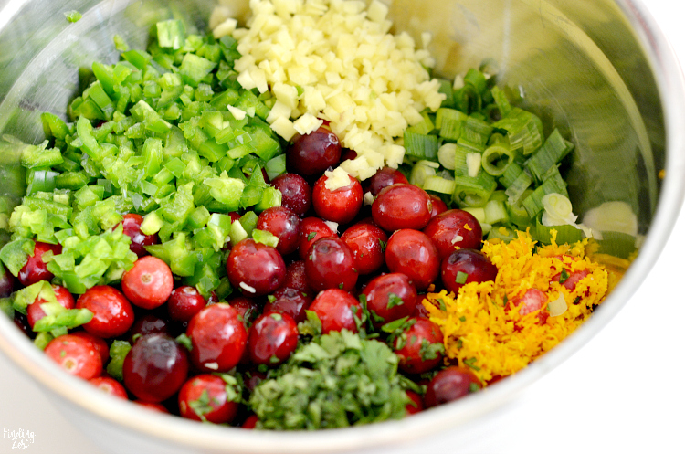 This cranberry salsa recipe made with fresh cranberries is a delicious holiday appetizer the whole crowd will love! Serve it just with chips or over a brick of cream cheese for an amazing flavor combination for Thanksgiving or Christmas. You'll love how quick this blender salsa comes together using fresh ingredients!