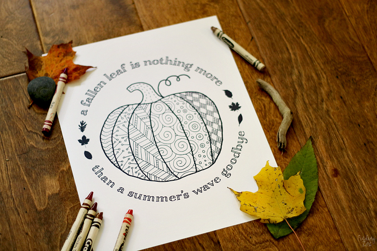 Pumpkin Coloring Page Printable - Finding Zest
